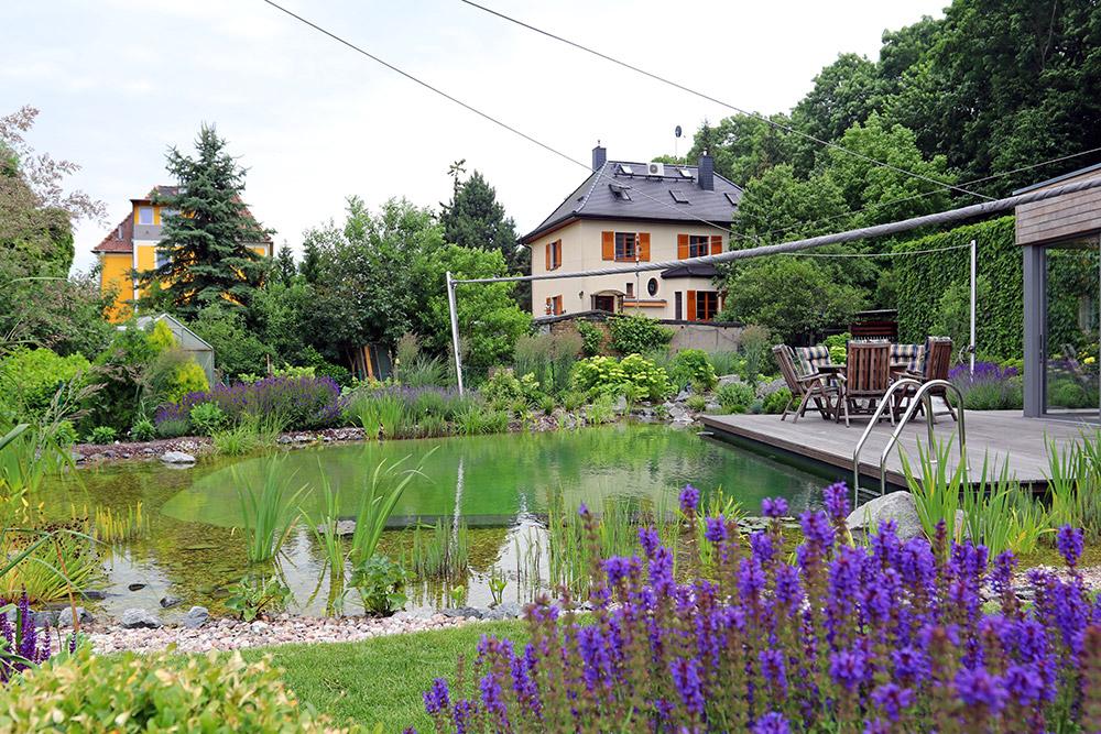Schwimmteich Teich Leipzig